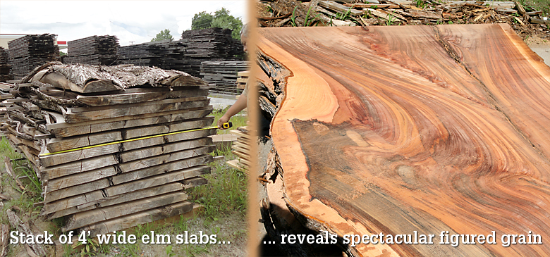 wide elm slabs beautiful grain