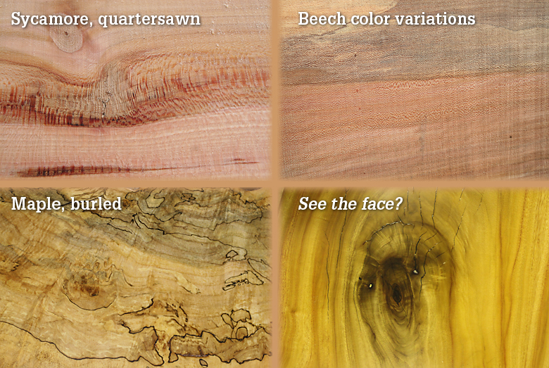 Sycamore and quartersawn Beech color variations, maple, burled
